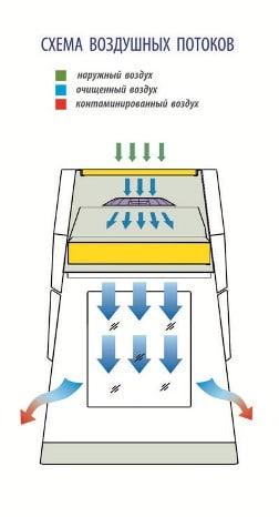 Схема воздушных потоков боксов БАВнп-01-Ламинар-С LORICA VIS-A-VIS