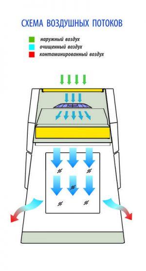 Схема воздушных потоков ламинарных боксов БАВнп-01-Ламинар-С LORICA VIS-A-VIS